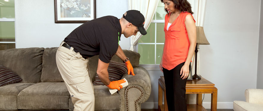 Lewisville, TX carpet upholstery cleaning