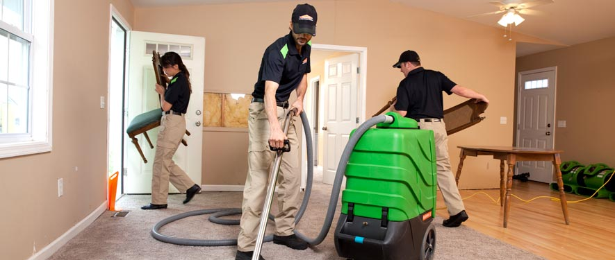 Lewisville, TX cleaning services